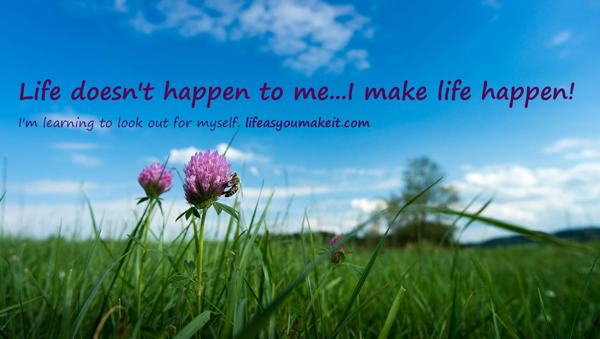 Life doesn't happen to me. I make life happen. I'm learning to look out for myself at lifeasyoumakeit.com